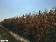 Teren de Vanzare, Arad, Sannicolau Mic - Foto 6