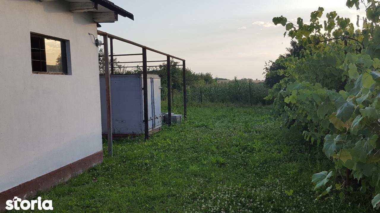 Casa de vanzare, Bihor (judet), Copăcel - Foto 7