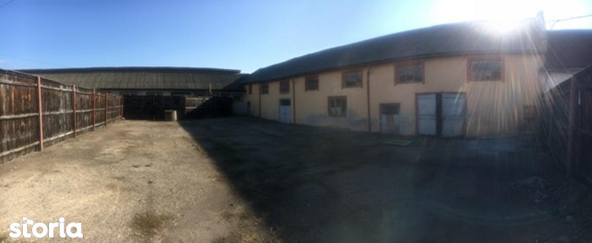 Depozit / Hala de vanzare, Maramureș (judet), Baia Mare - Foto 2