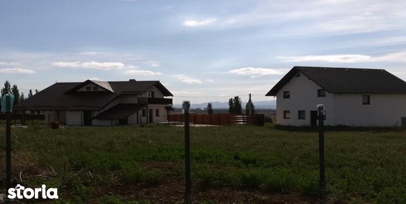 Teren de Vanzare, Sibiu (judet), Cristian - Foto 1