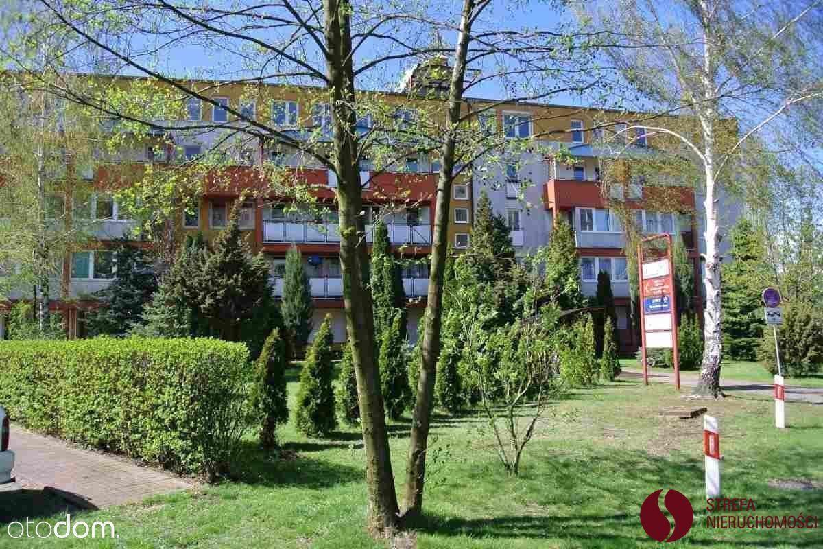 Mieszkanie na wynajem, Poznań, Grunwald - Foto 12