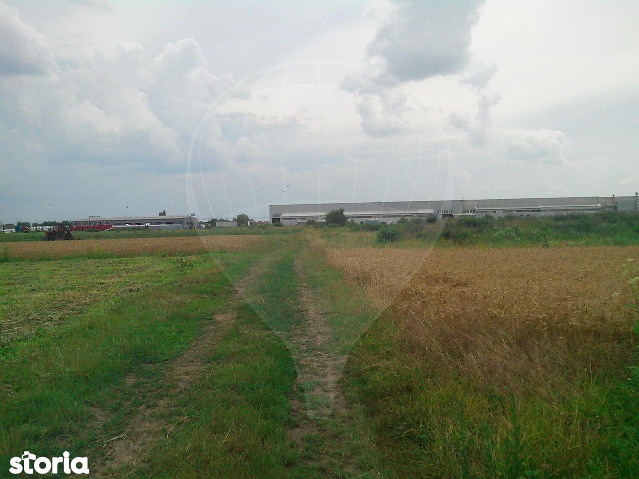 Teren de Vanzare, Bihor (judet), Sântion - Foto 4