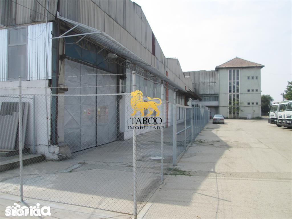 Depozit / Hala de vanzare, Alba Iulia, Alba, Barabant - Foto 8
