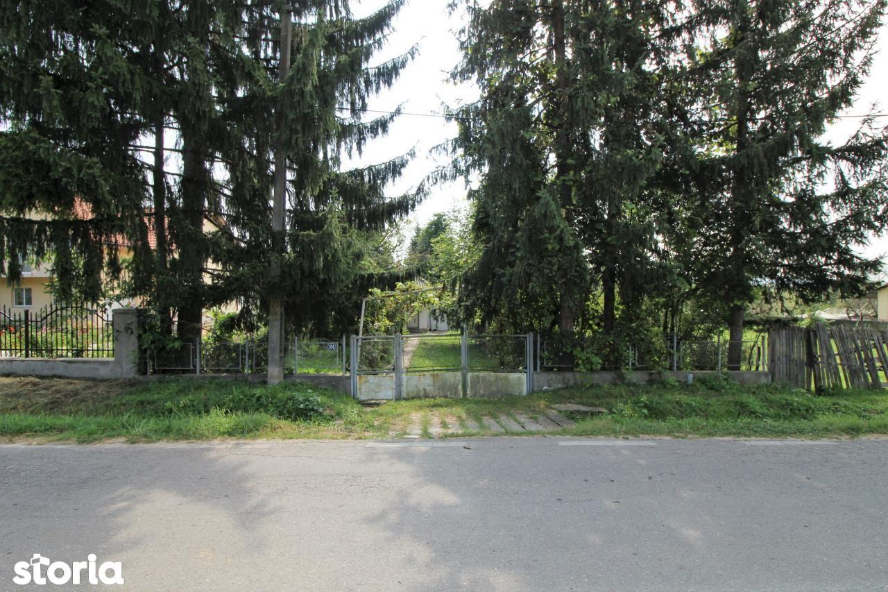 Casa de vanzare, Argeș (judet), Strada Victoriei - Foto 18