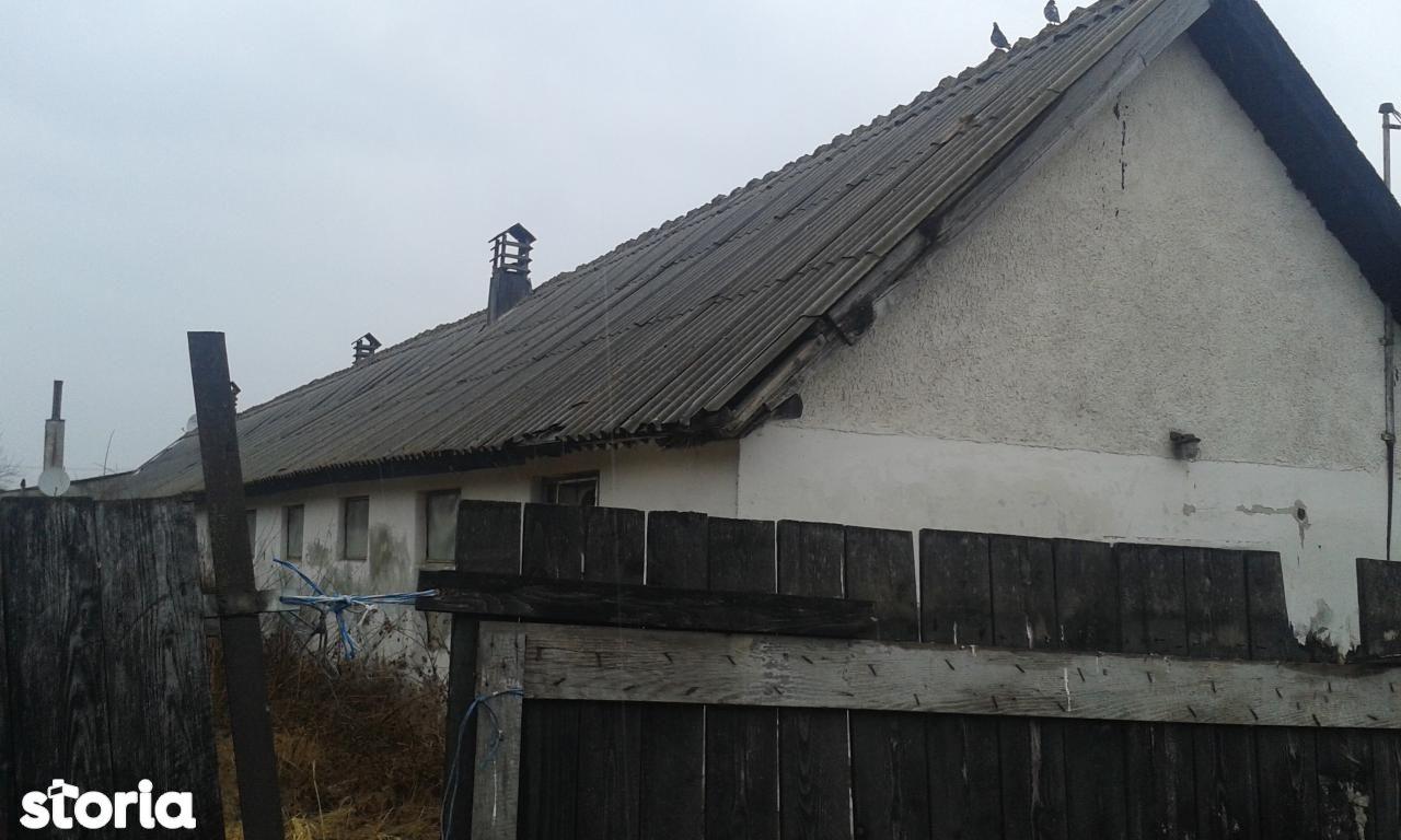 Depozit / Hala de vanzare, Brașov (judet), Rotbav - Foto 1