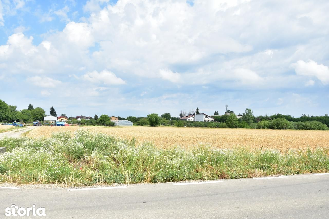 Teren de Vanzare, Ilfov (judet), Ciolpani - Foto 4