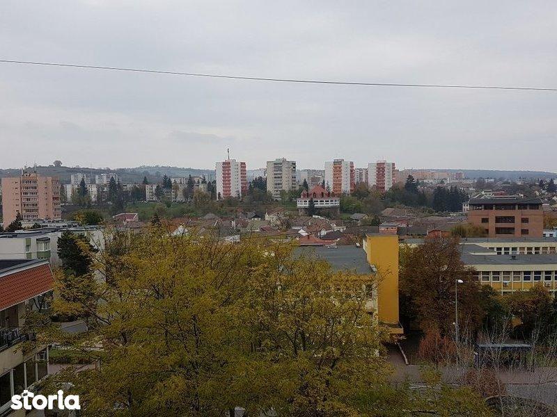 Apartament de inchiriat, Mureș (judet), Târgu Mureş - Foto 11