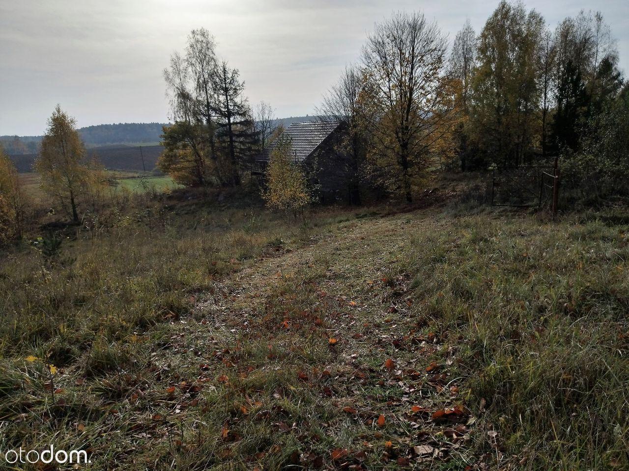 Działka na sprzedaż, Drzewina, gdański, pomorskie - Foto 10