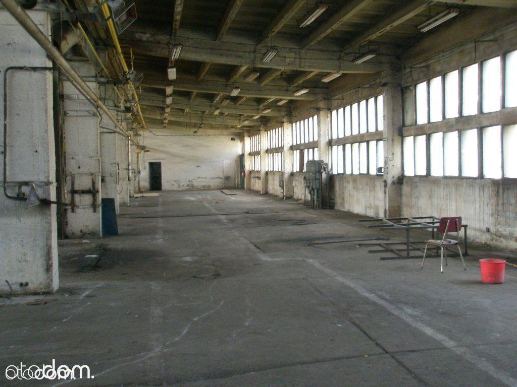 Hala/Magazyn na sprzedaż, Mysłowice, śląskie - Foto 4