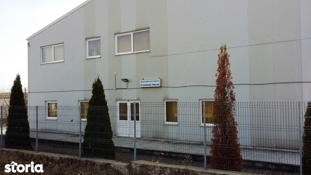 Depozit / Hala de vanzare, Suceava (judet), Bălăceana - Foto 1