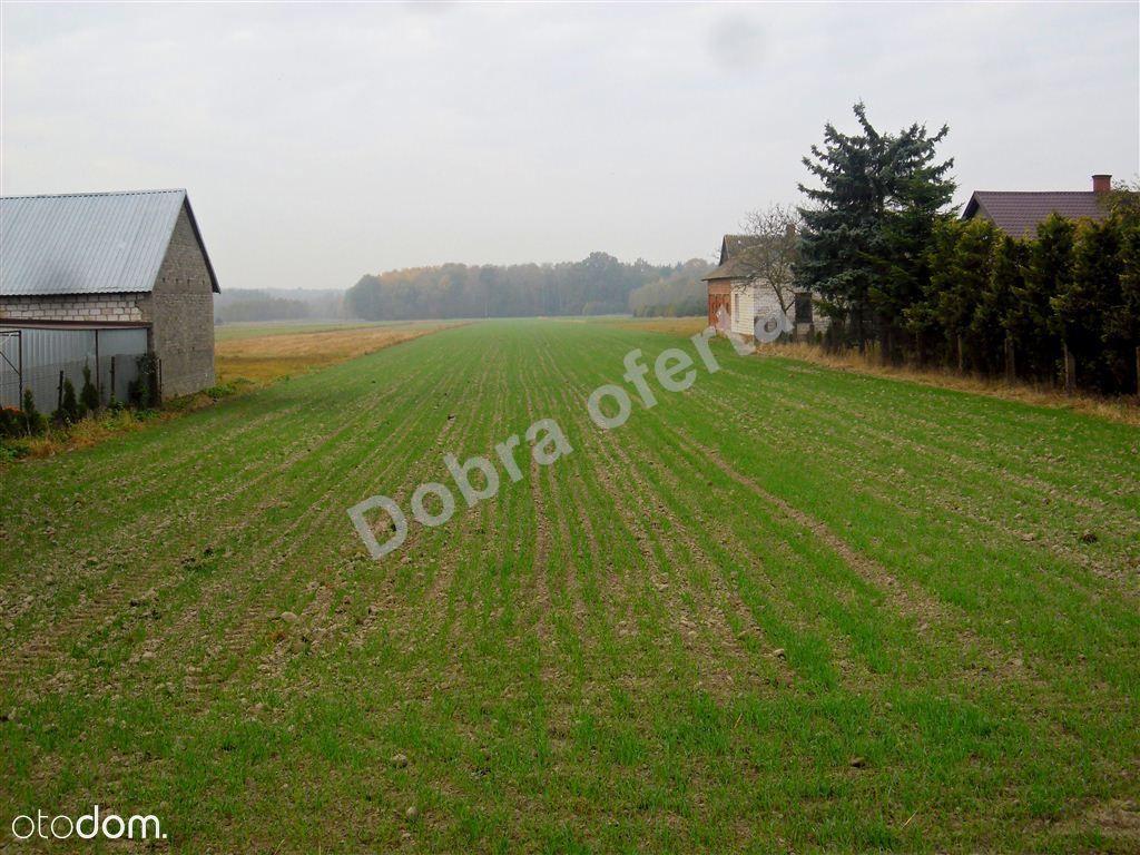 Działka na sprzedaż, Nowe Zalesie, miński, mazowieckie - Foto 2