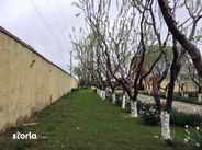 Teren de Vanzare, Giurgiu (judet), Gorneni - Foto 12