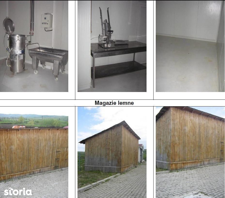 Depozit / Hala de vanzare, Suceava (judet), Bălăceana - Foto 4
