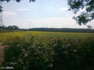 Działka na sprzedaż, Torzym, sulęciński, lubuskie - Foto 4