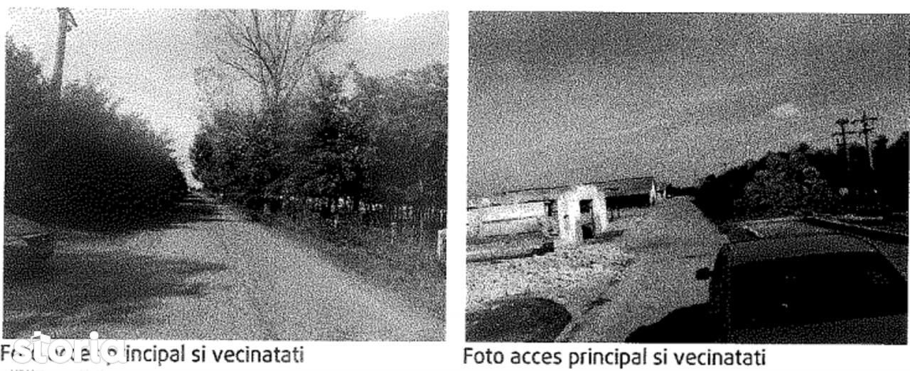 Teren de Vanzare, Buzău (judet), Pogoanele - Foto 6
