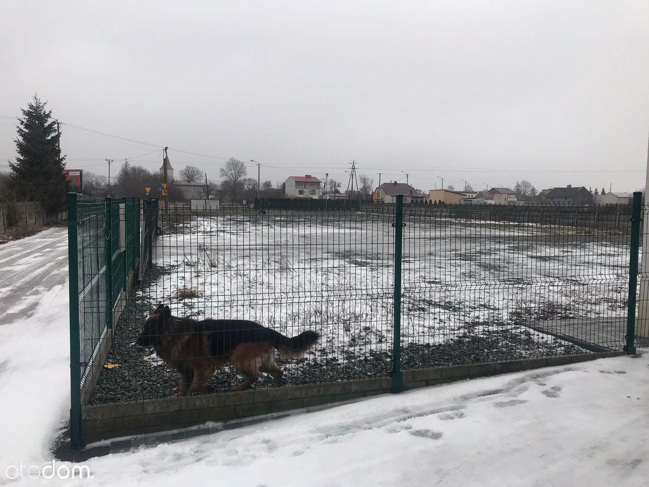 Działka na wynajem, Dąbrowa, wieluński, łódzkie - Foto 4