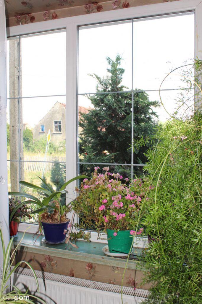 Dom na sprzedaż, Kolsko, nowosolski, lubuskie - Foto 3