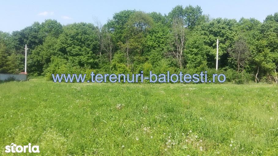 Teren de Vanzare, Balotesti, Bucuresti - Ilfov - Foto 7