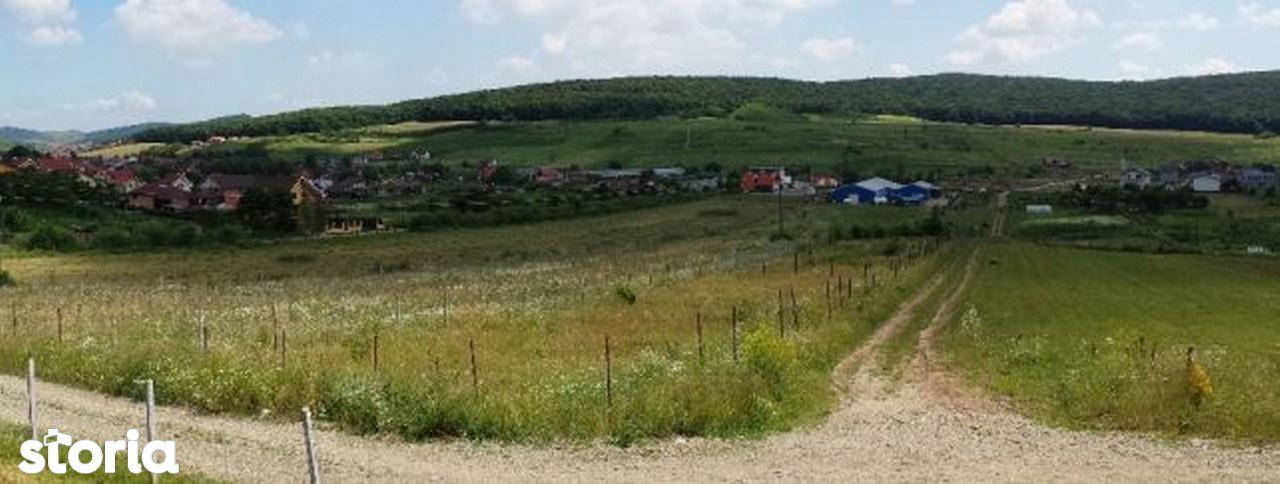 Teren de Vanzare, Mureș (judet), Orizont - Foto 6
