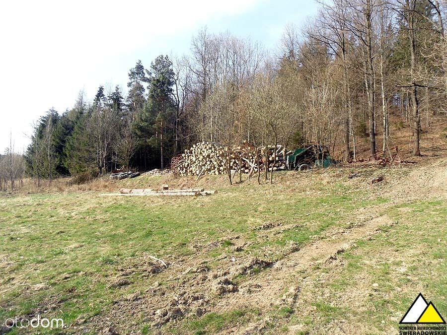Działka na sprzedaż, Łupki, lwówecki, dolnośląskie - Foto 6