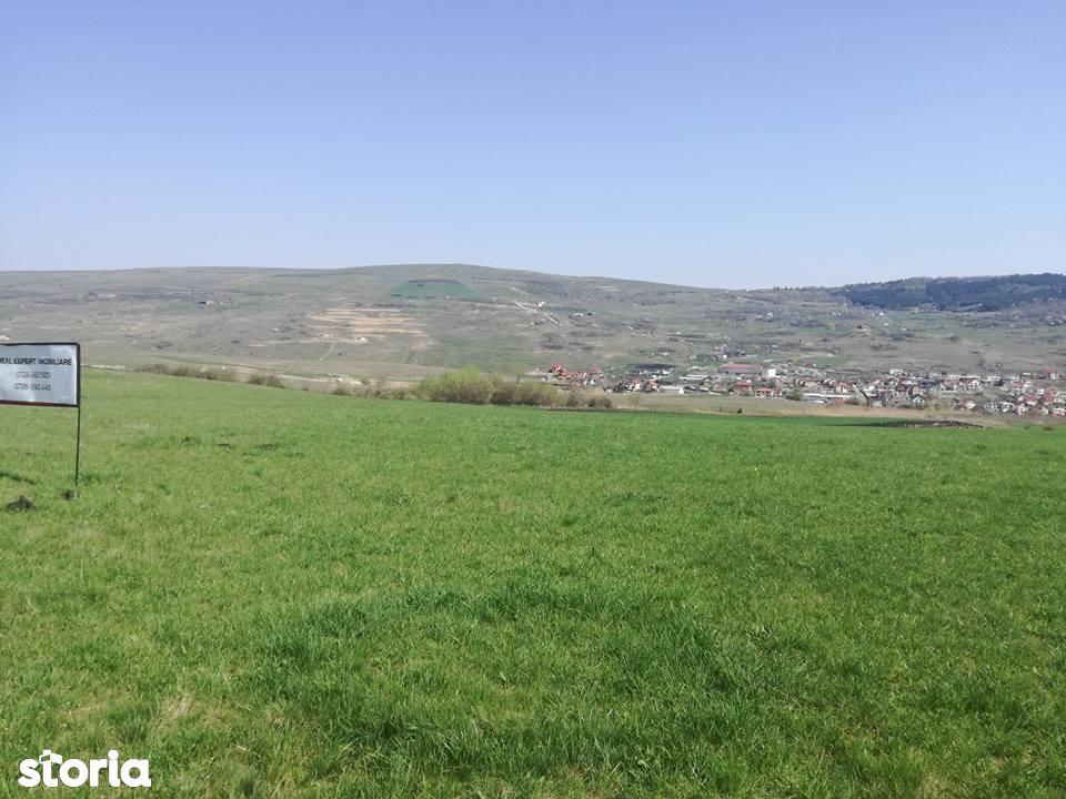 Teren de Vanzare, Cluj (judet), Cluj-Napoca - Foto 2