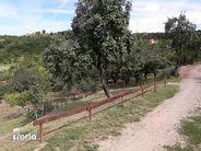 Casa de vanzare, Bihor (judet), Podgoria - Foto 4