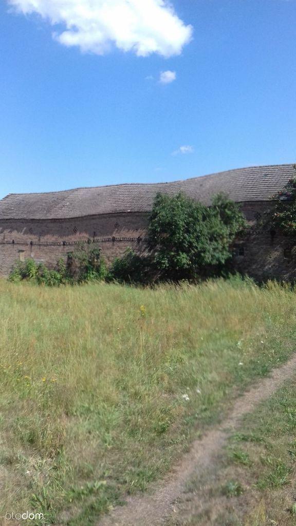 Dom na sprzedaż, Borek, gorzowski, lubuskie - Foto 6