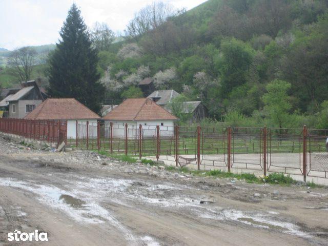 Teren de Vanzare, Hunedoara (judet), Mureș - Foto 3