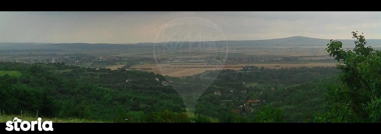 Teren de Vanzare, Bihor (judet), Strada Podgoriei - Foto 2