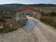 Teren de Vanzare, Cluj (judet), Chinteni - Foto 3