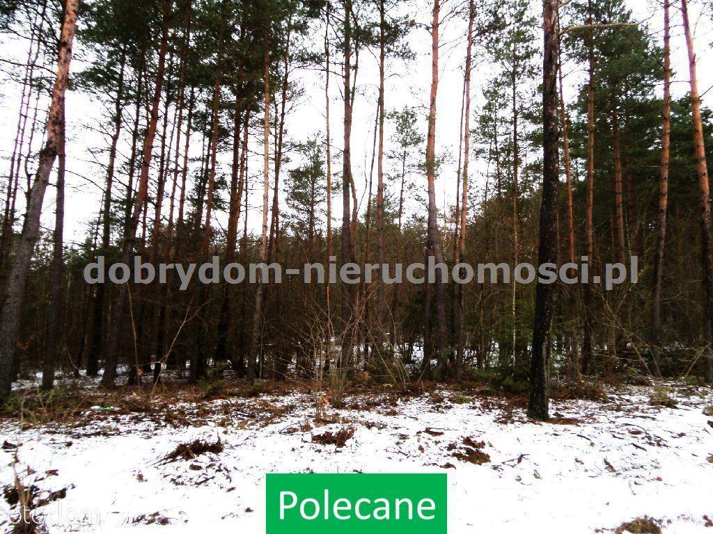 Działka na sprzedaż, Wasilków, białostocki, podlaskie - Foto 1