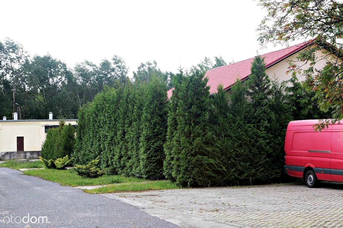 Hala/Magazyn na sprzedaż, Nowa Sól, nowosolski, lubuskie - Foto 7