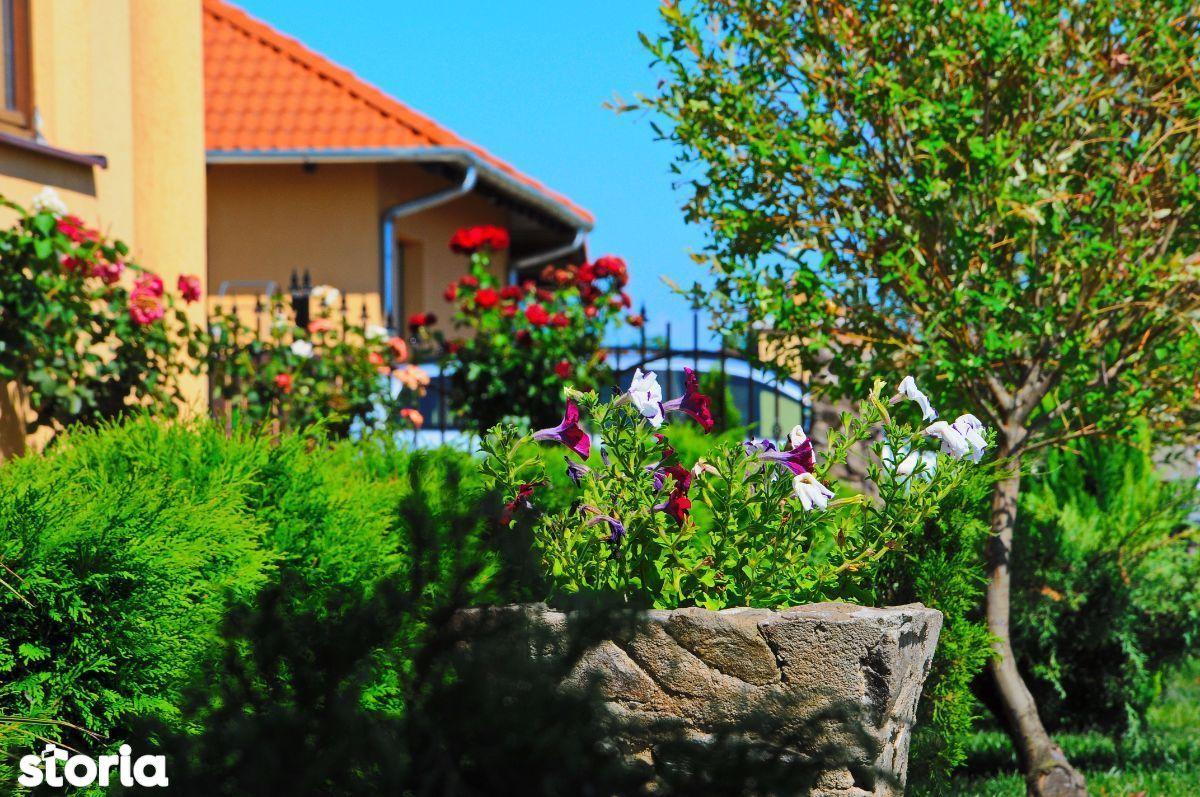 Teren de Vanzare, Satu Mare (judet), Dorolţ - Foto 13