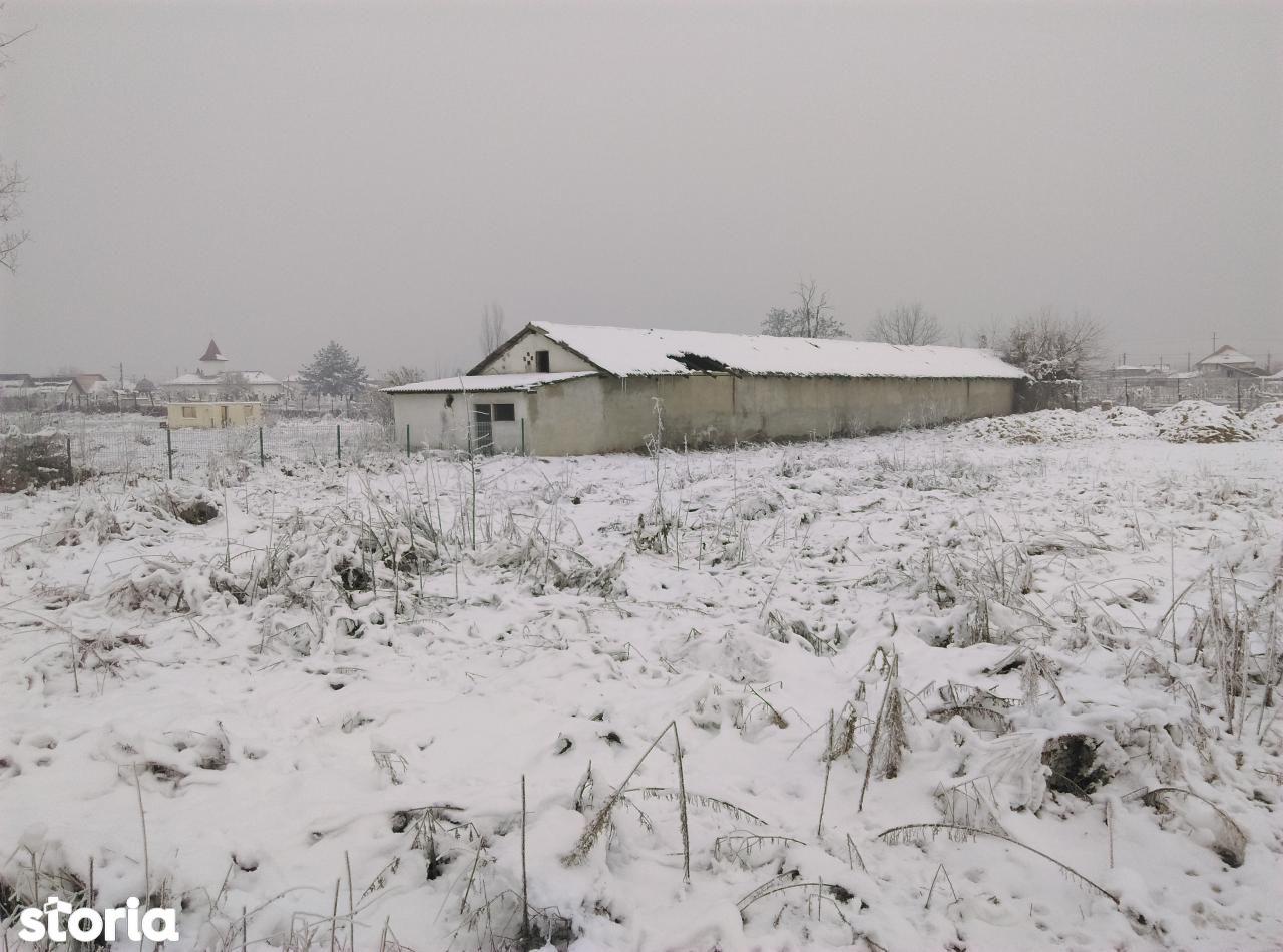 Teren de Vanzare, Dolj (judet), Lascăr Catargiu - Foto 13