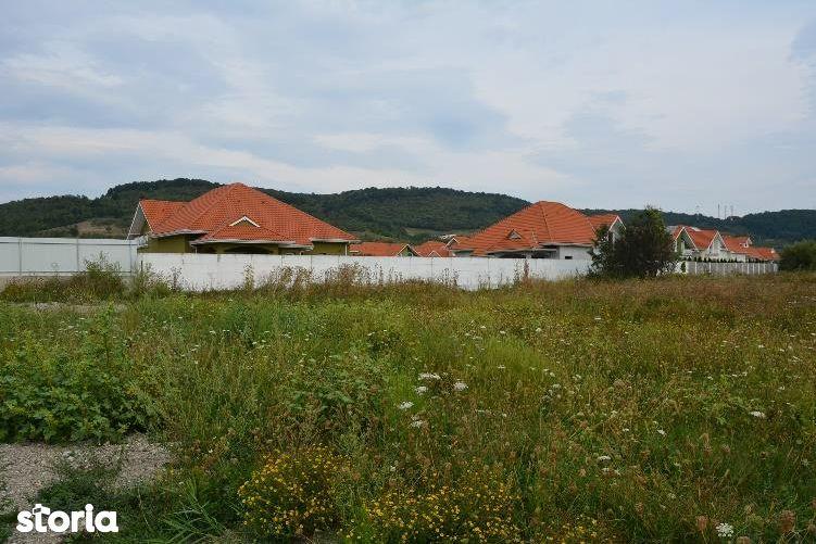 Teren de Vanzare, Hunedoara (judet), Haţeg - Foto 2