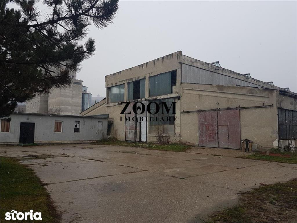 Depozit / Hala de inchiriat, Cluj (judet), Strada Cheile Baciului - Foto 1