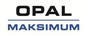 MAKSIMUM Sp. z o.o. HOLDING S.K.A.