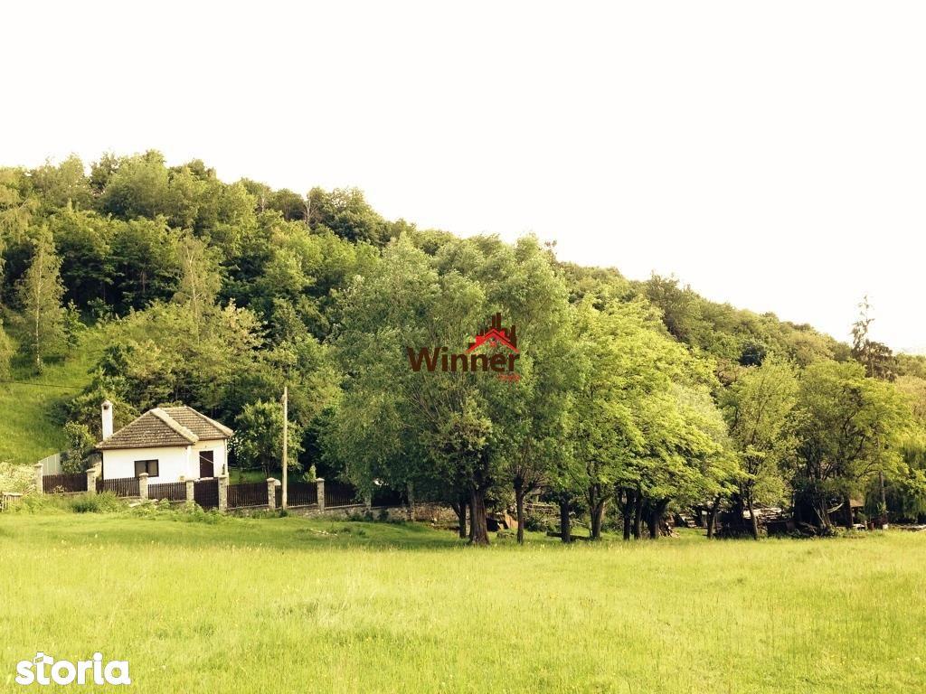Casa de vanzare, Argeș (judet), Loturi - Foto 19