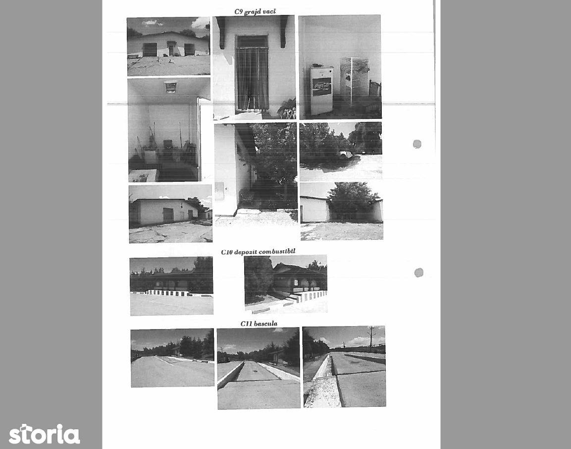 Depozit / Hala de vanzare, Deleni, Constanta - Foto 11