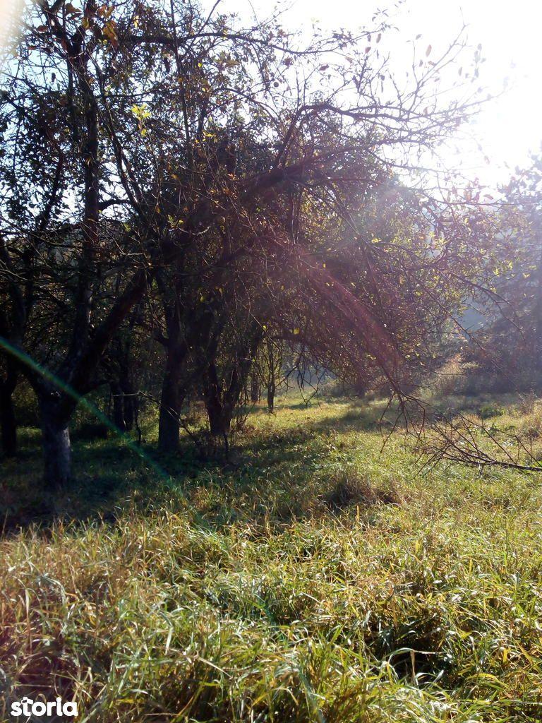 Teren de Vanzare, Suceava (judet), Suceava - Foto 6