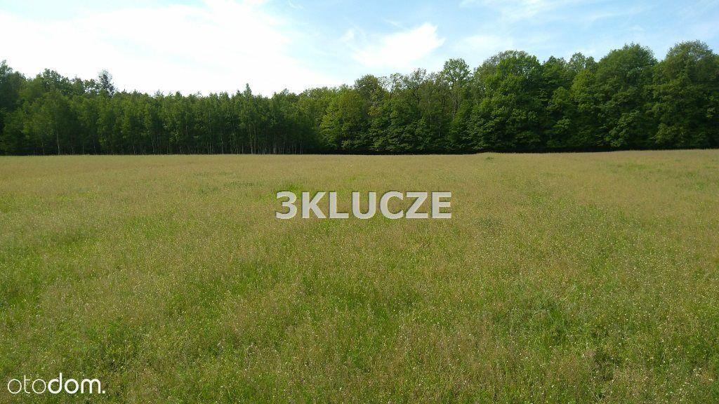 Działka na sprzedaż, Majdan Kozłowiecki, lubartowski, lubelskie - Foto 2