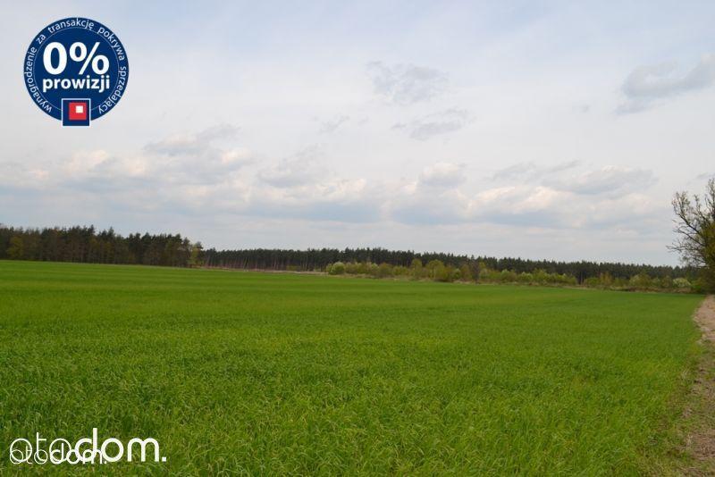 Działka na sprzedaż, Kraśnik Dolny, bolesławiecki, dolnośląskie - Foto 8