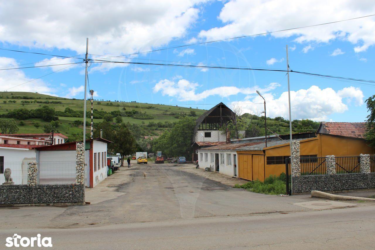 Depozit / Hala de vanzare, Slimnic, Sibiu - Foto 12