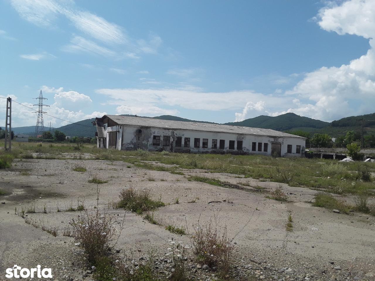 Depozit / Hala de vanzare, Bistrița-Năsăud (judet), Viişoara - Foto 4