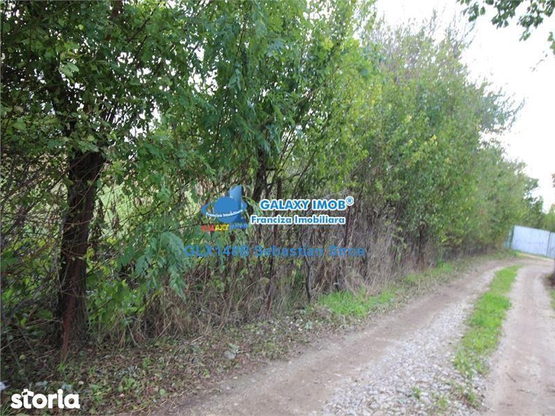 Teren de Vanzare, Ilfov (judet), Intrarea Brădișului - Foto 8