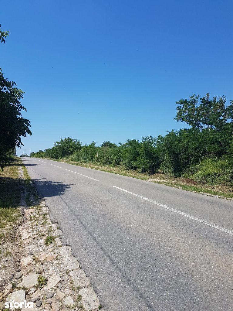 Teren de Vanzare, Bihor (judet), Paleu - Foto 3