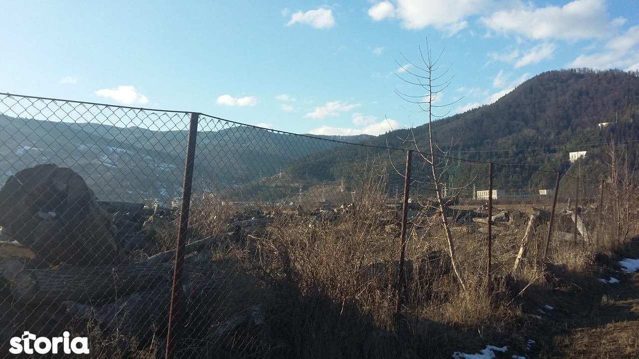 Teren de Vanzare, Neamț (judet), Pângăraţi - Foto 1