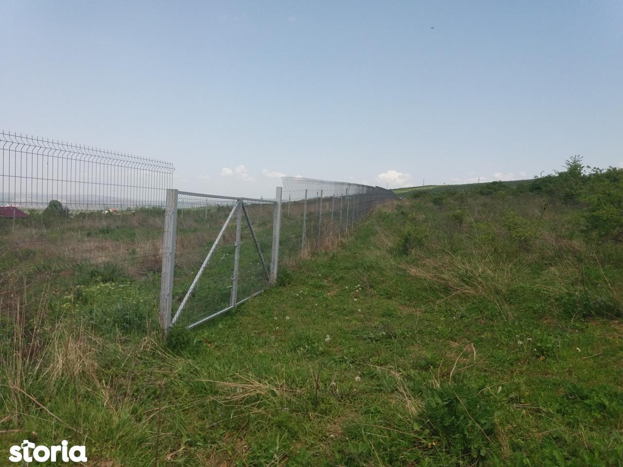Teren de Vanzare, Iași (judet), Bucium - Foto 7