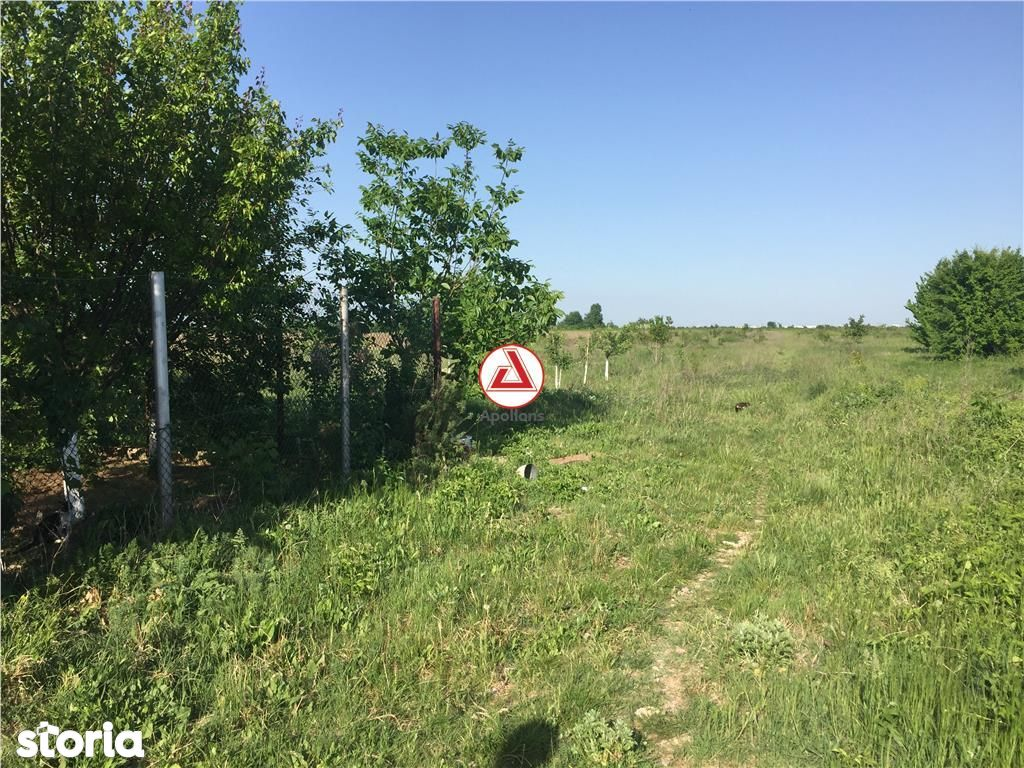 Teren de Vanzare, Ilfov (judet), Strada Ana Ipătescu - Foto 5
