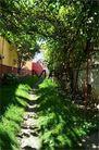 Casa de vanzare, Saliste, Sibiu - Foto 9